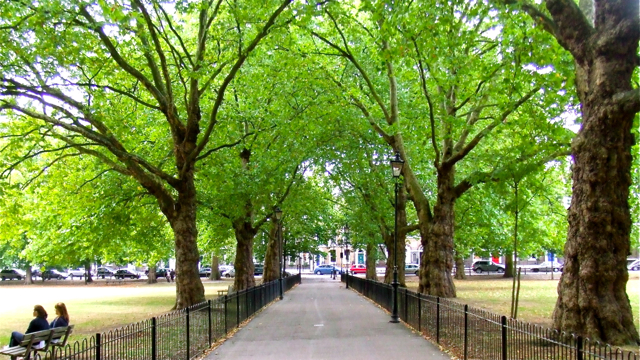 Highbury Fields, London, England. Photo: Andrew Cornwell. All rights reserved.